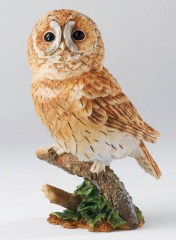 Country Artists Tawny Owl CA01512