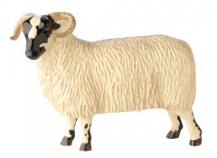 John Beswick Black Faced Ewe