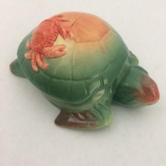 Oscar the Sea Turtle Face Pot